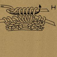 Für die Noppe mit der Häkelnadel 1 Schlinge abmaschen und 4 zusammen abgemaschte Stäbchen häkeln, d. h. in die folgende Masche 1 Reihe tiefer einstechen, 1 Schlinge holen und abmaschen, dann 4mal abw. 1 Umschlag bilden, in den gleichen Einstichpunkt einstechen, 1 Schlinge holen und stets die beiden Maschenglieder zusammen abmaschen. Dann die auf der Nadel befindlichen 5 Maschenglieder zusammen mit 1 neuen Umschlag abmaschen und die Maschen auf die rechte Nadel nehmen. Die folgenden Maschen mustergemäß rechts bzw. links stricken. In der folgenden Reihe die Noppenmaschen wie angegeben zusammenstricken.